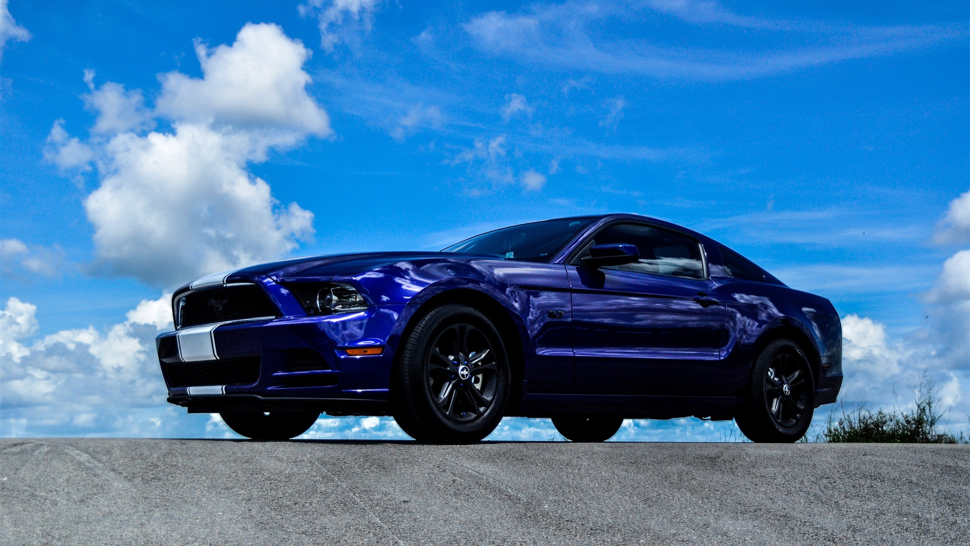 Wallpaper ford mustang blue car side view 3840x2160 uhd 4k picture image - Car side view wallpaper ...