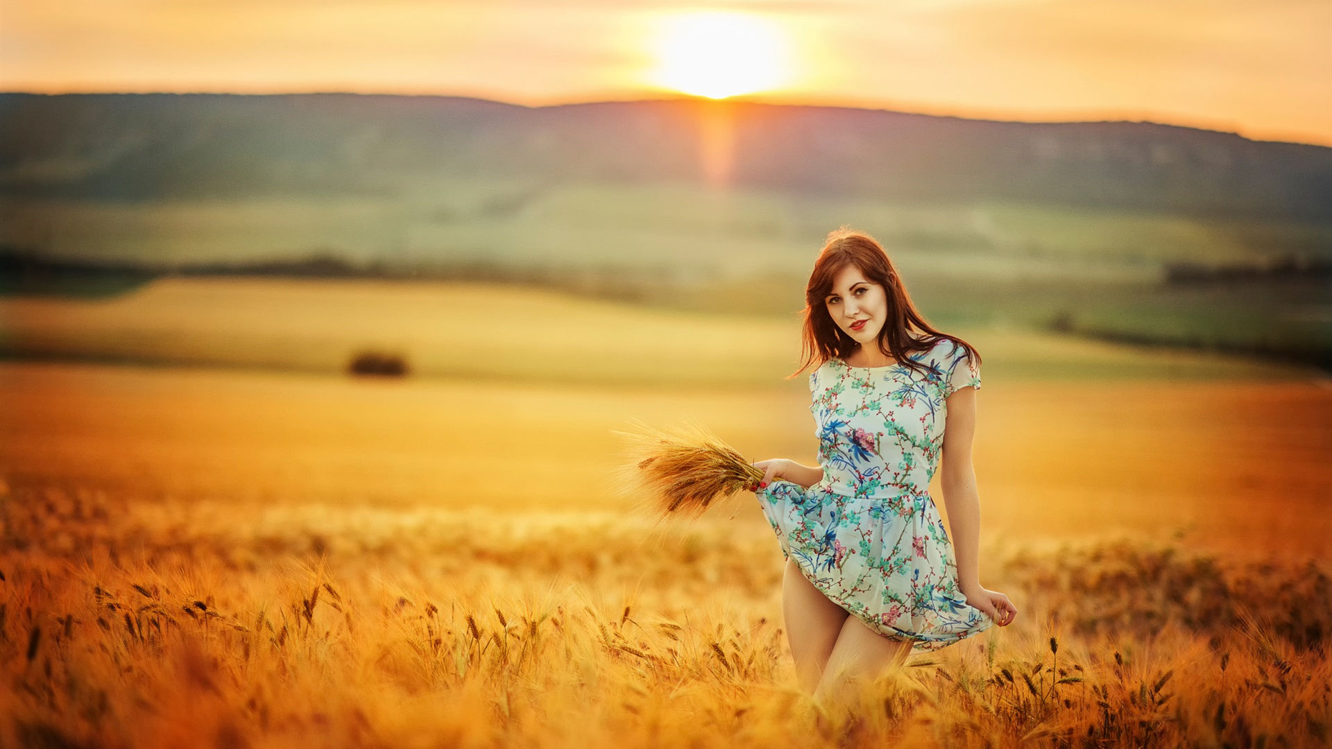 Wallpaper Summer Girl In The Wheat Field Sunset 1920x1440