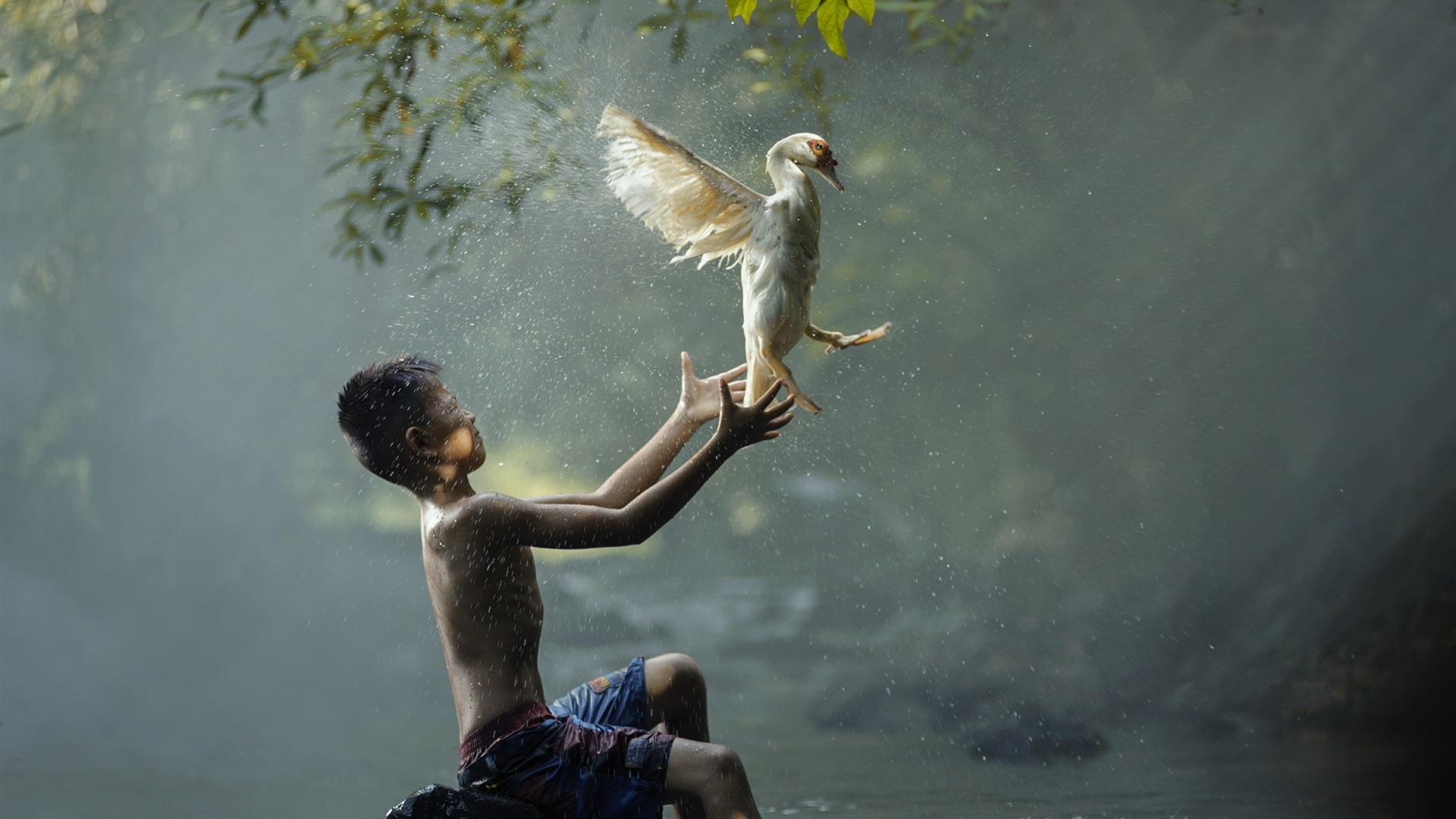 хоть картинки про птиц и людей становиться позу