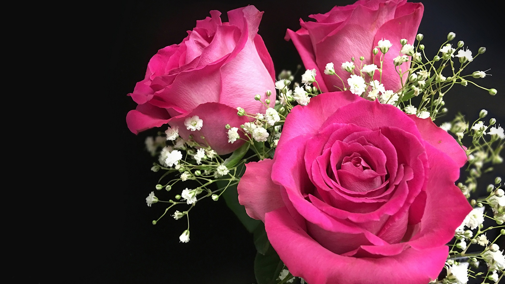 Fonds d'écran Roses, fleurs, bouquet, noir, fond 1920x1200 HD image