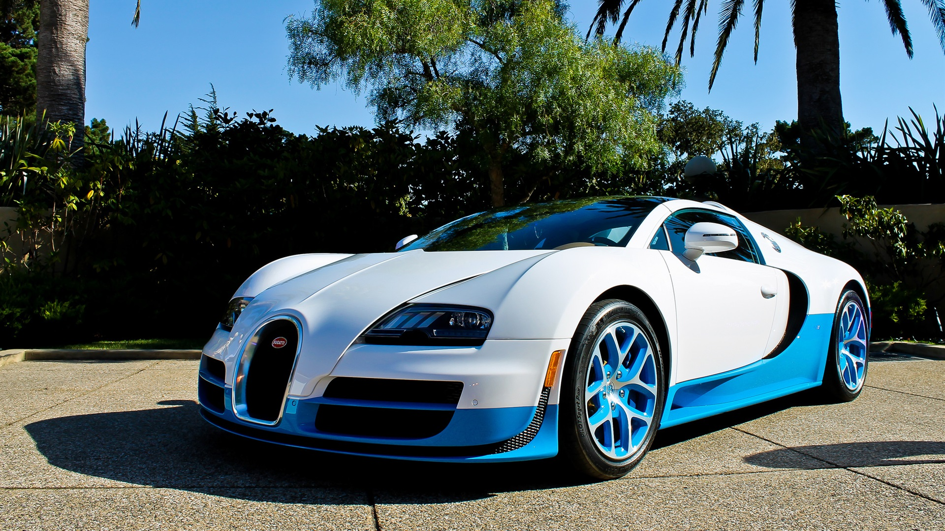 Wallpaper Bugatti Veyron Supercar White And Blue Palm