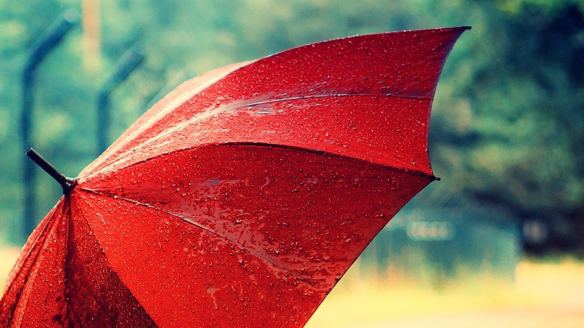 Wallpaper Red Umbrella After Rain Water Drops 1920x1080 Full HD