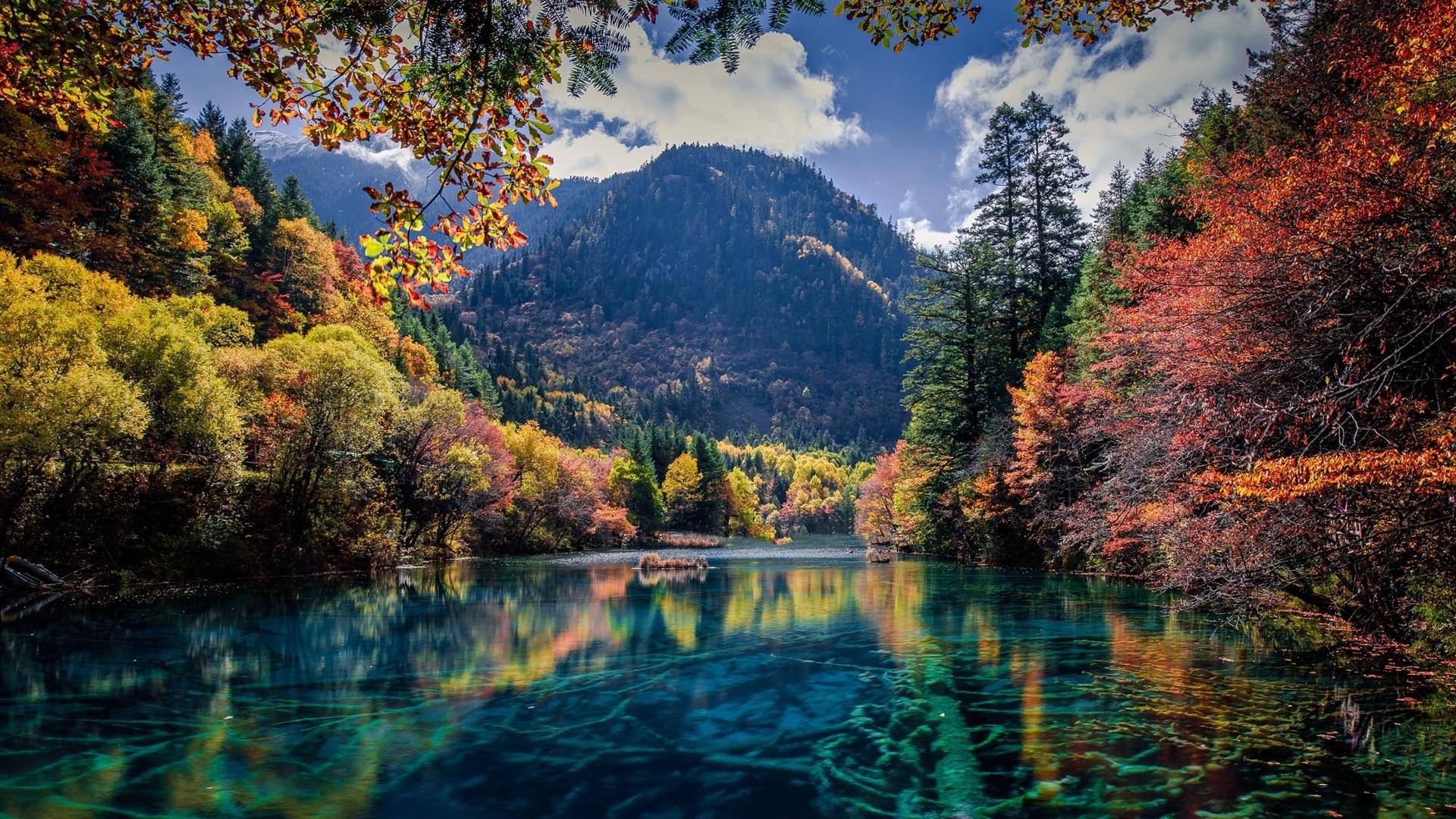 Schone hintergrundbilder natur herbst