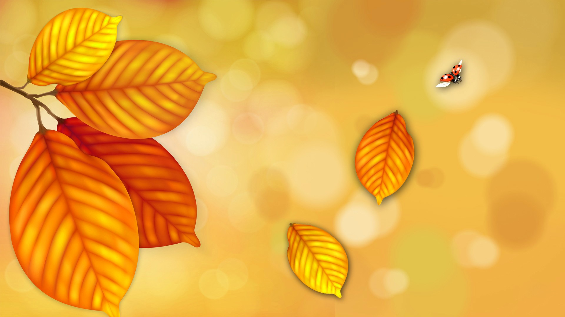 столы обои желтые листья ждали киногероя, что