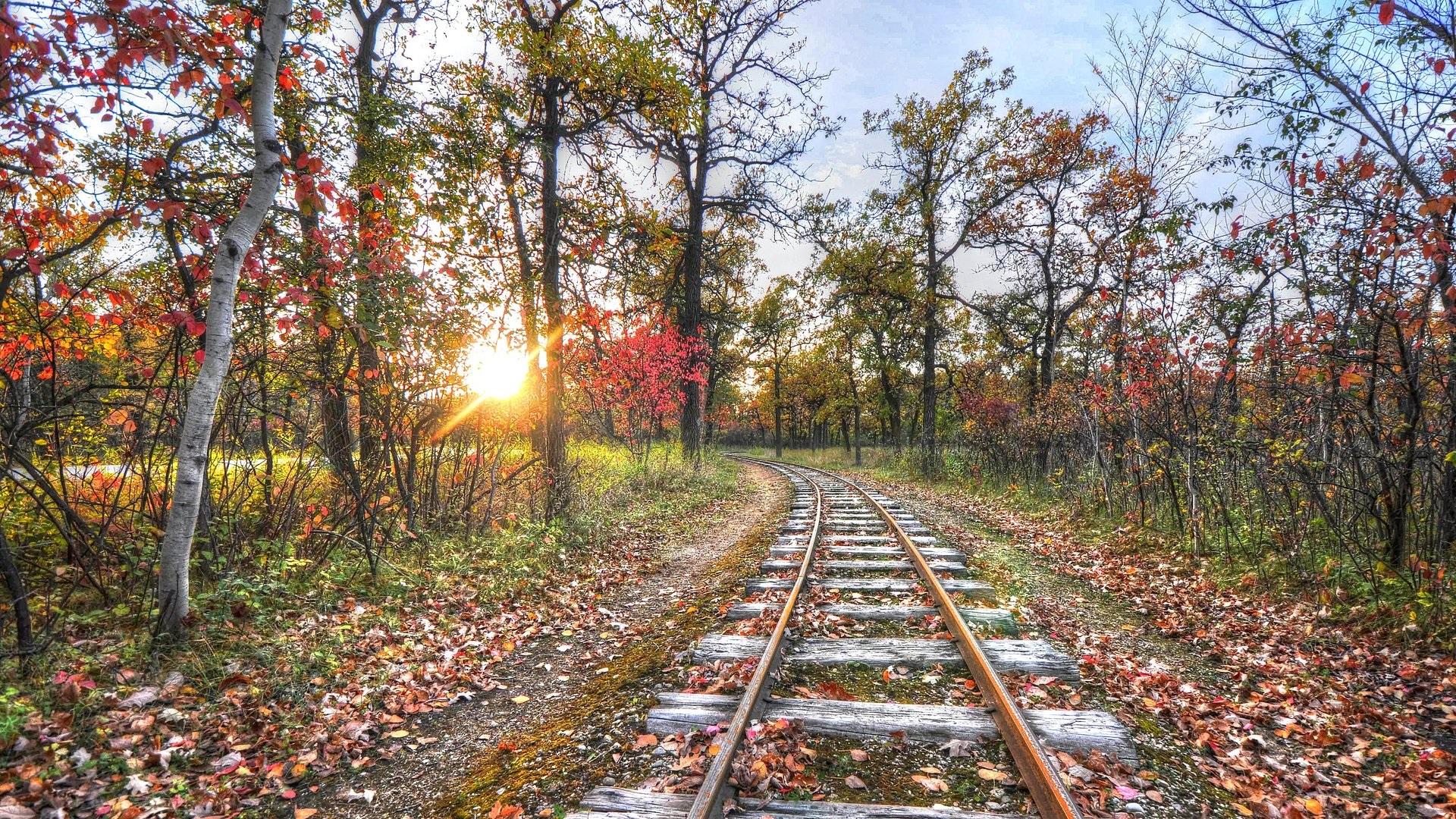 Wallpaper Railway, track, trees, sunset