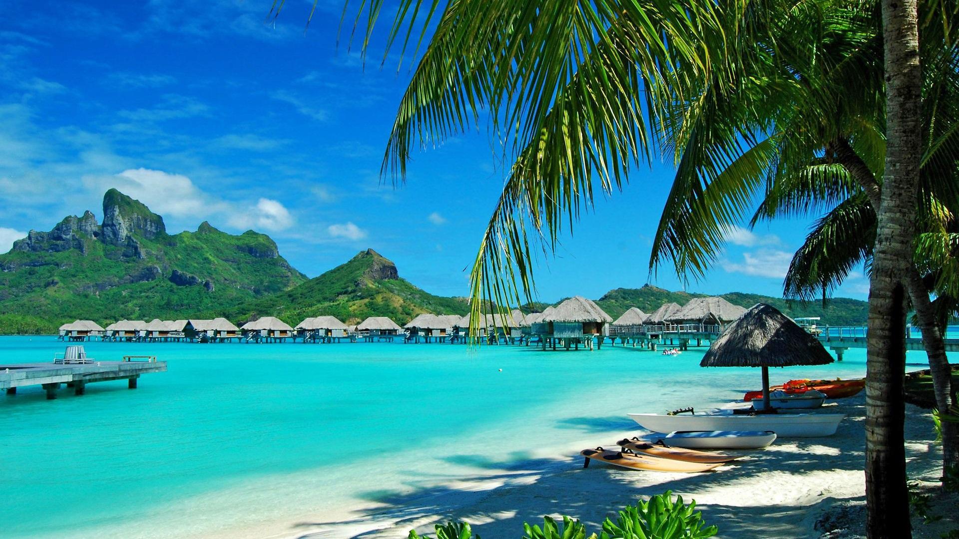 Wallpaper Resort Huts Sea Palm Trees Bora Bora Island French 1920x1200 Hd Picture Image