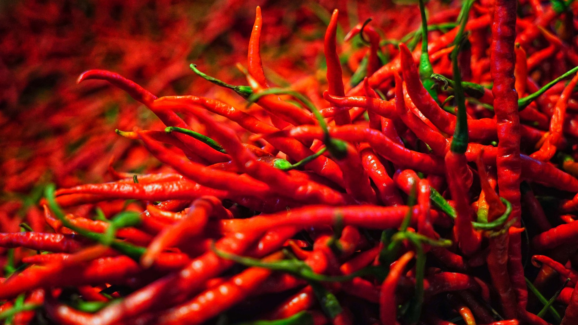 Wallpaper A Lot Of Red Peppers Spicy Vegetables