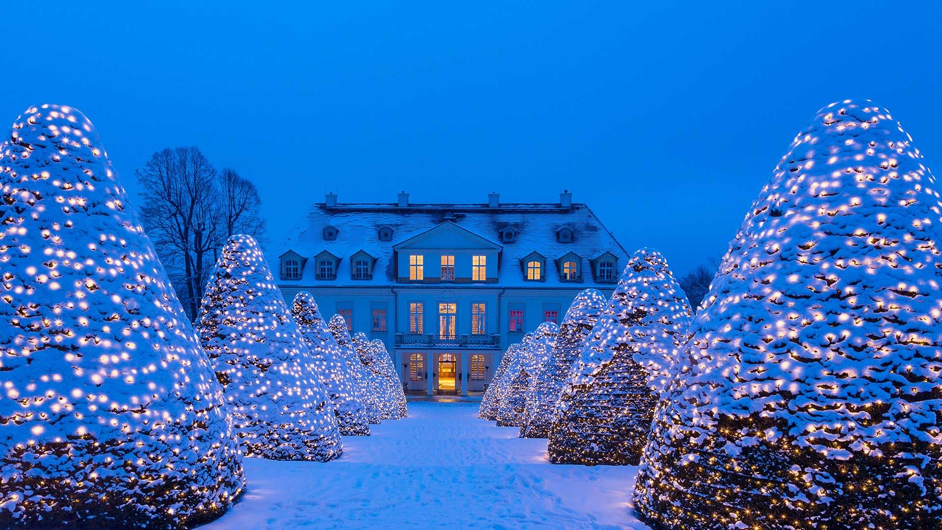 Deutschland, Sachsen, Schnee, Winter, Lichter, Bäume, Nacht, Schloss ...