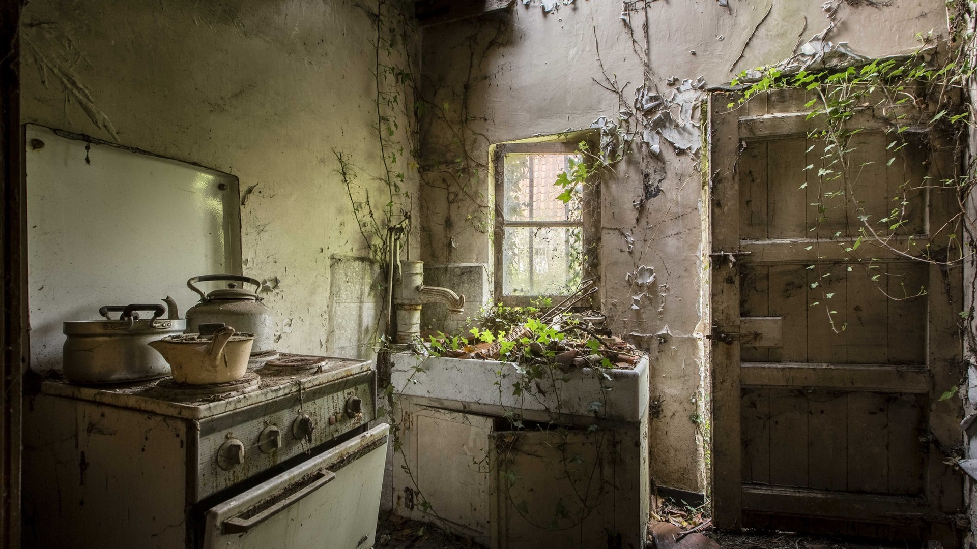 Wallpaper Ruins Kitchen Furniture Door Plants Growing
