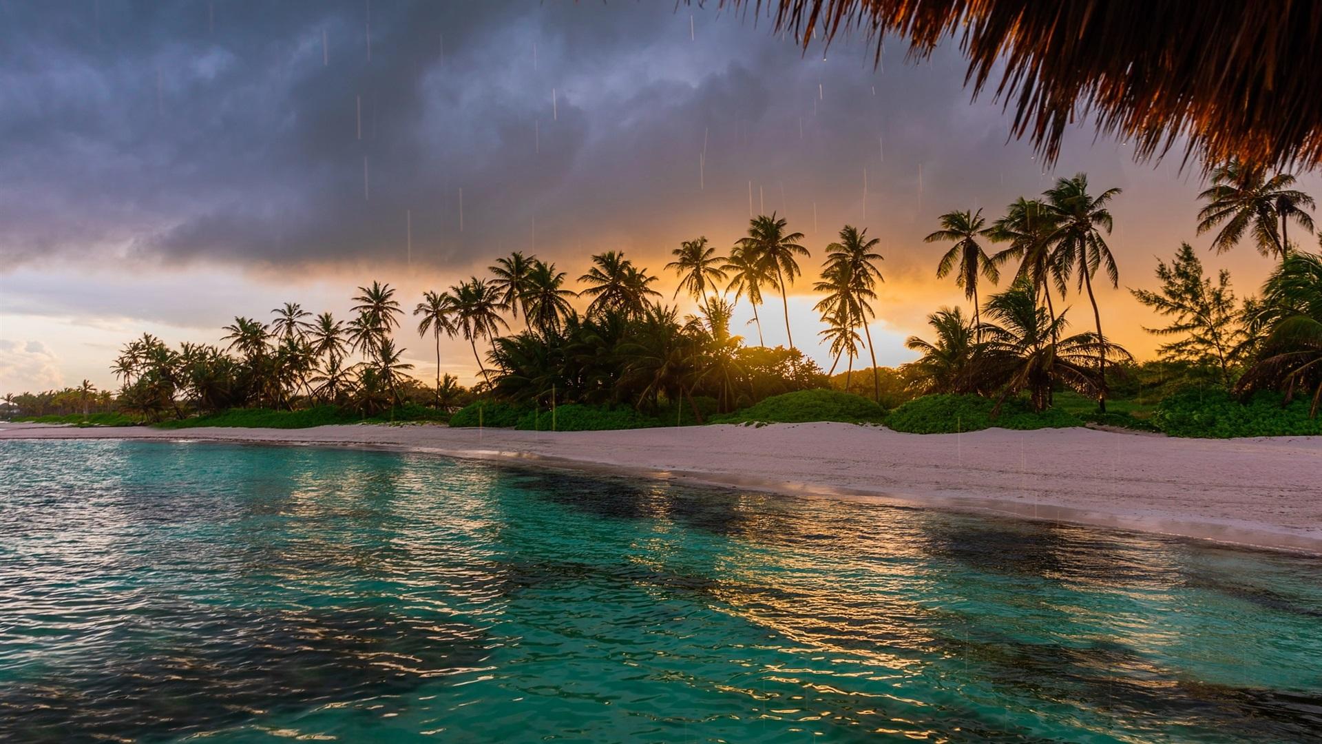 Wallpaper Caribbean Sea Beach Sunset Palm Trees Hd 5k: 배경 화면 해변, 야자수, 바다, 일몰 1920x1200 HD 그림, 이미지