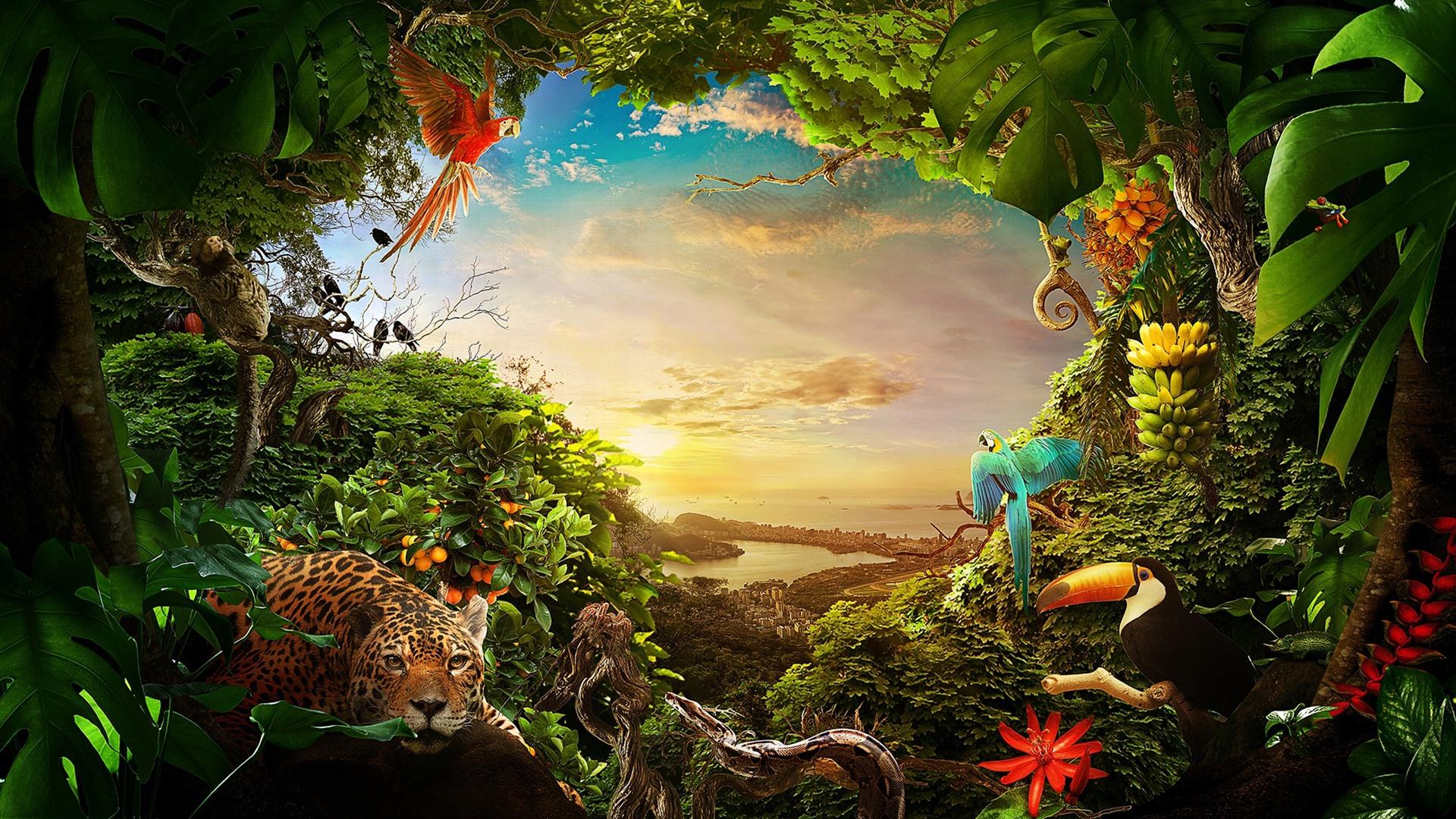 Fondo De Pantalla Selva: Fondos De Pantalla Selva, Muchos Animales, Plantas, Ciudad