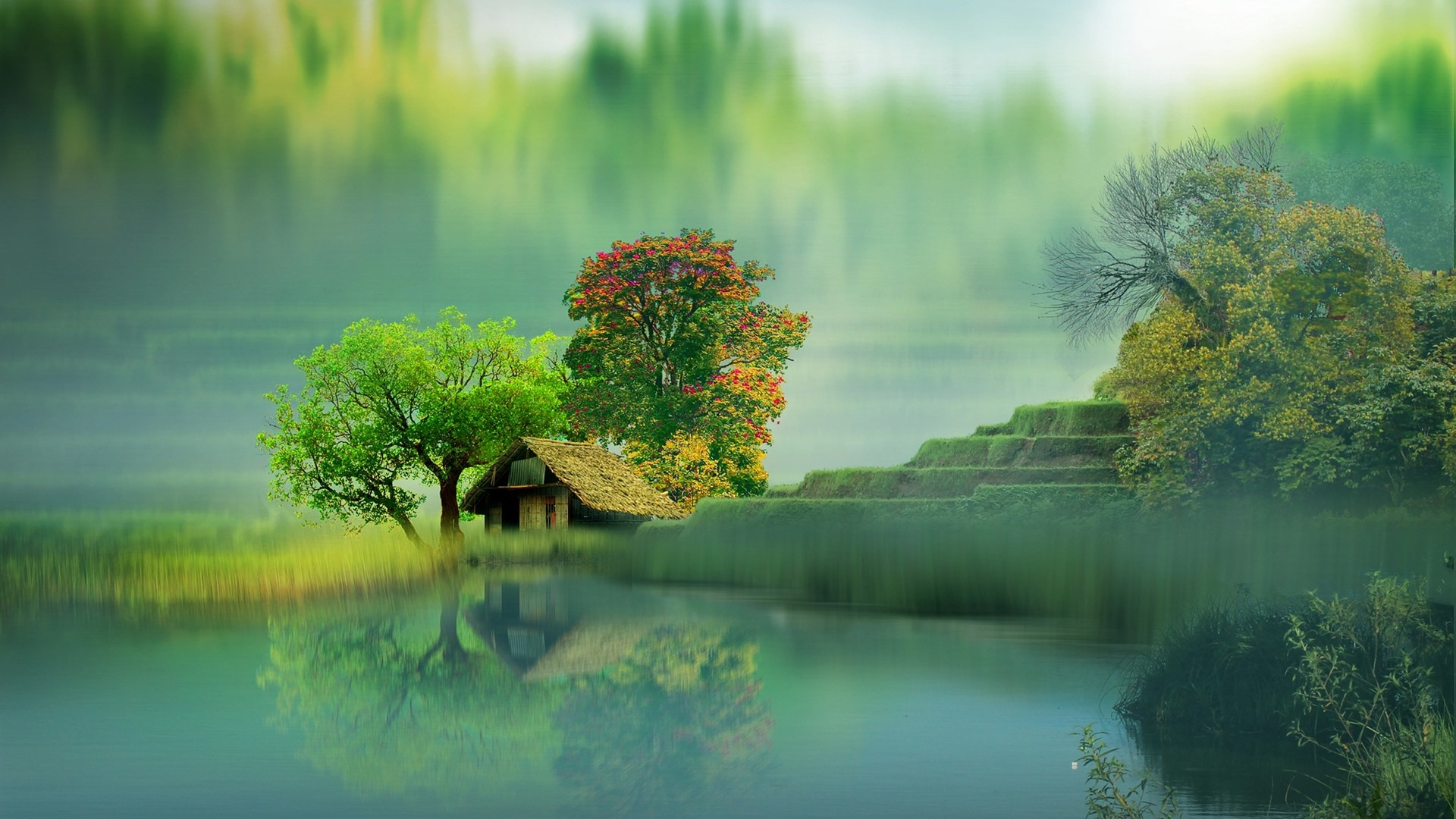 Beautiful Scenery House Lake Trees Fog Water Reflection