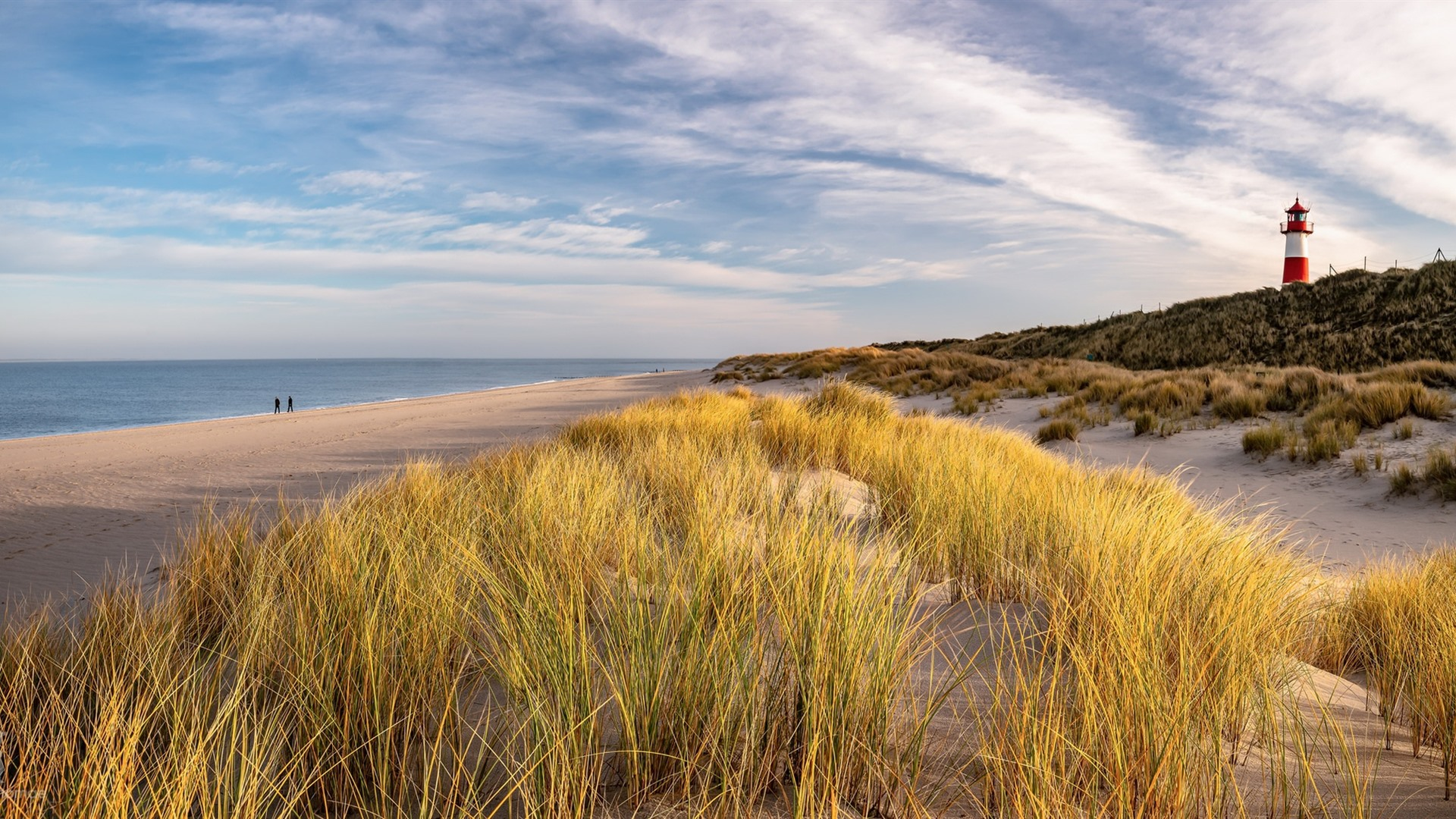 Image result for insel sylt germany