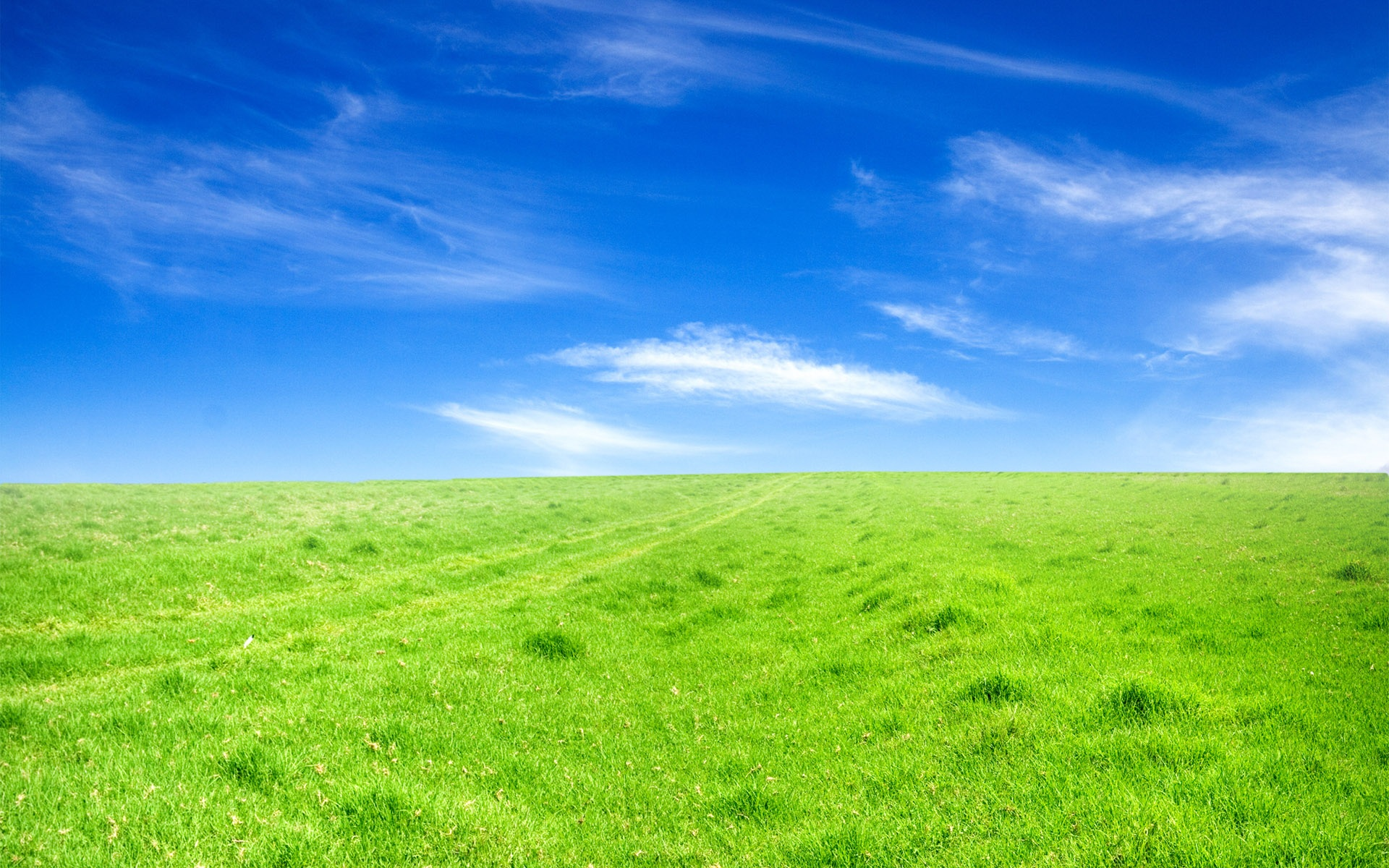 Blauer Himmel Wallpaper Grünes Gras Blauer Himmel