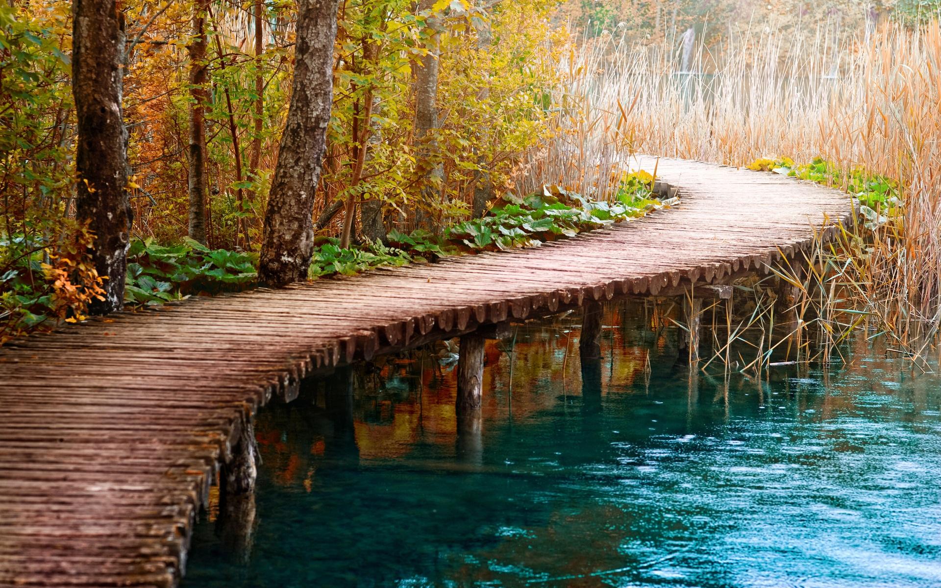 мост цветы речка бесплатно