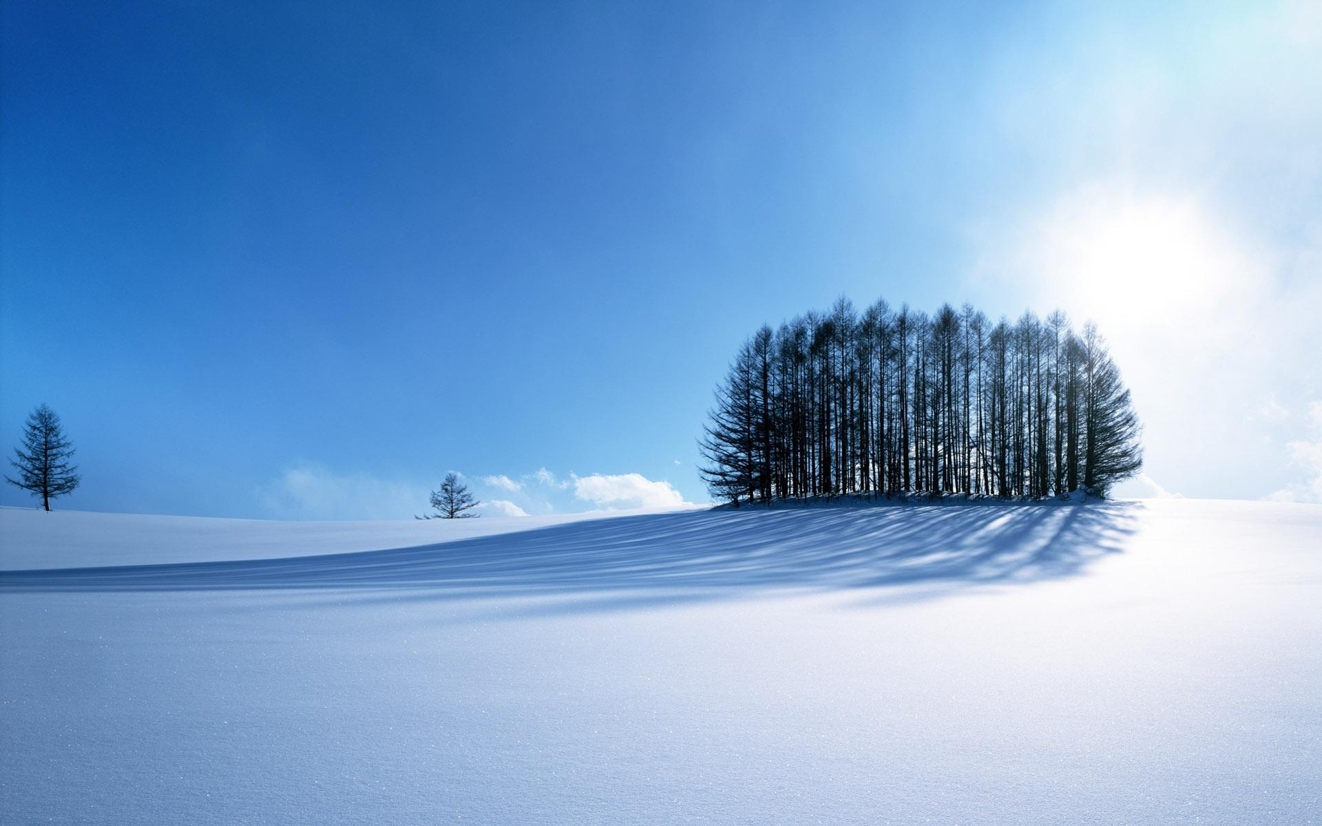 壁紙 冬の雪 1920x1200 Hd 無料のデスクトップの背景 画像