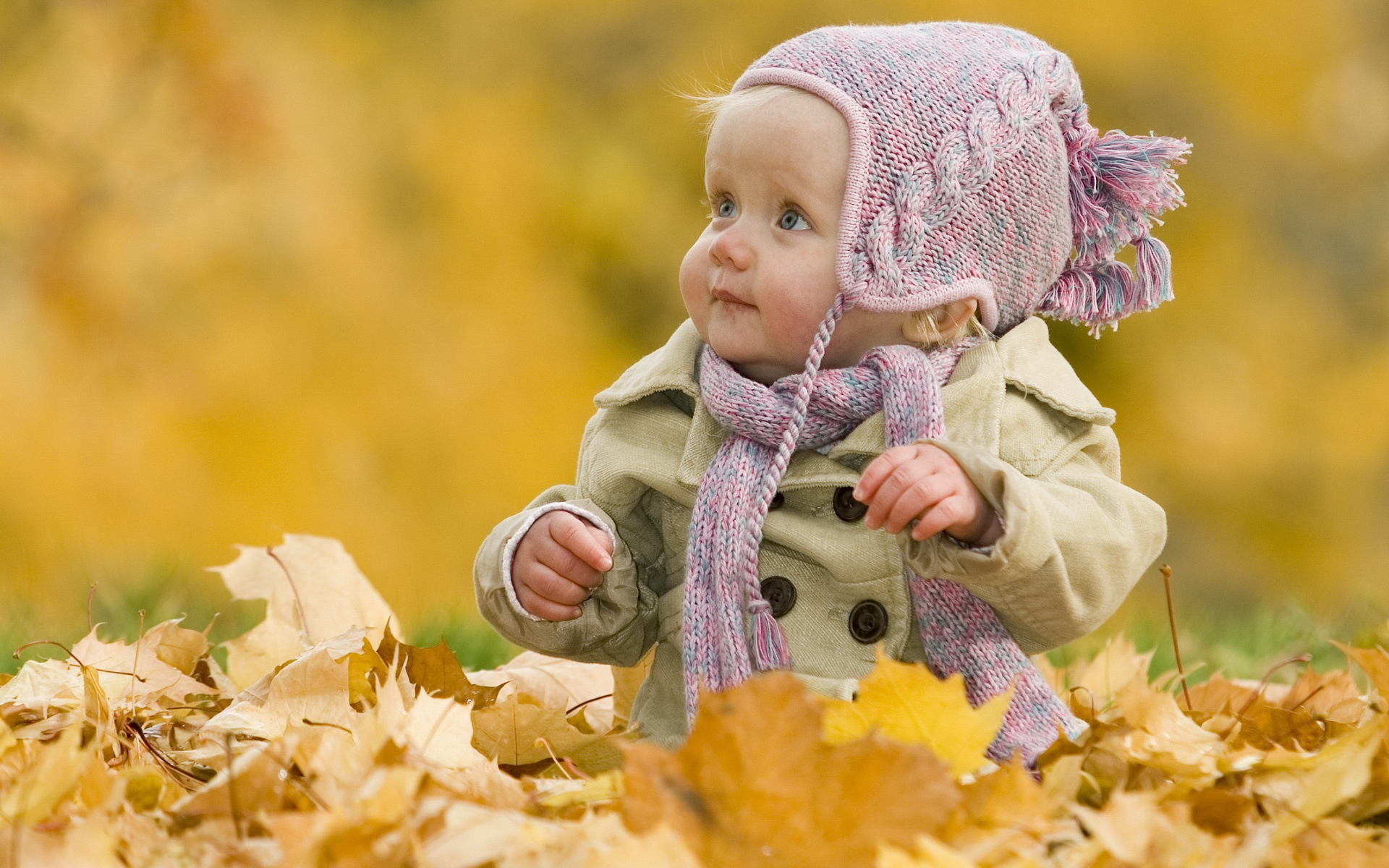 壁紙 かわいい赤ちゃんの秋 1920x1200 Hd 無料のデスクトップの背景 画像