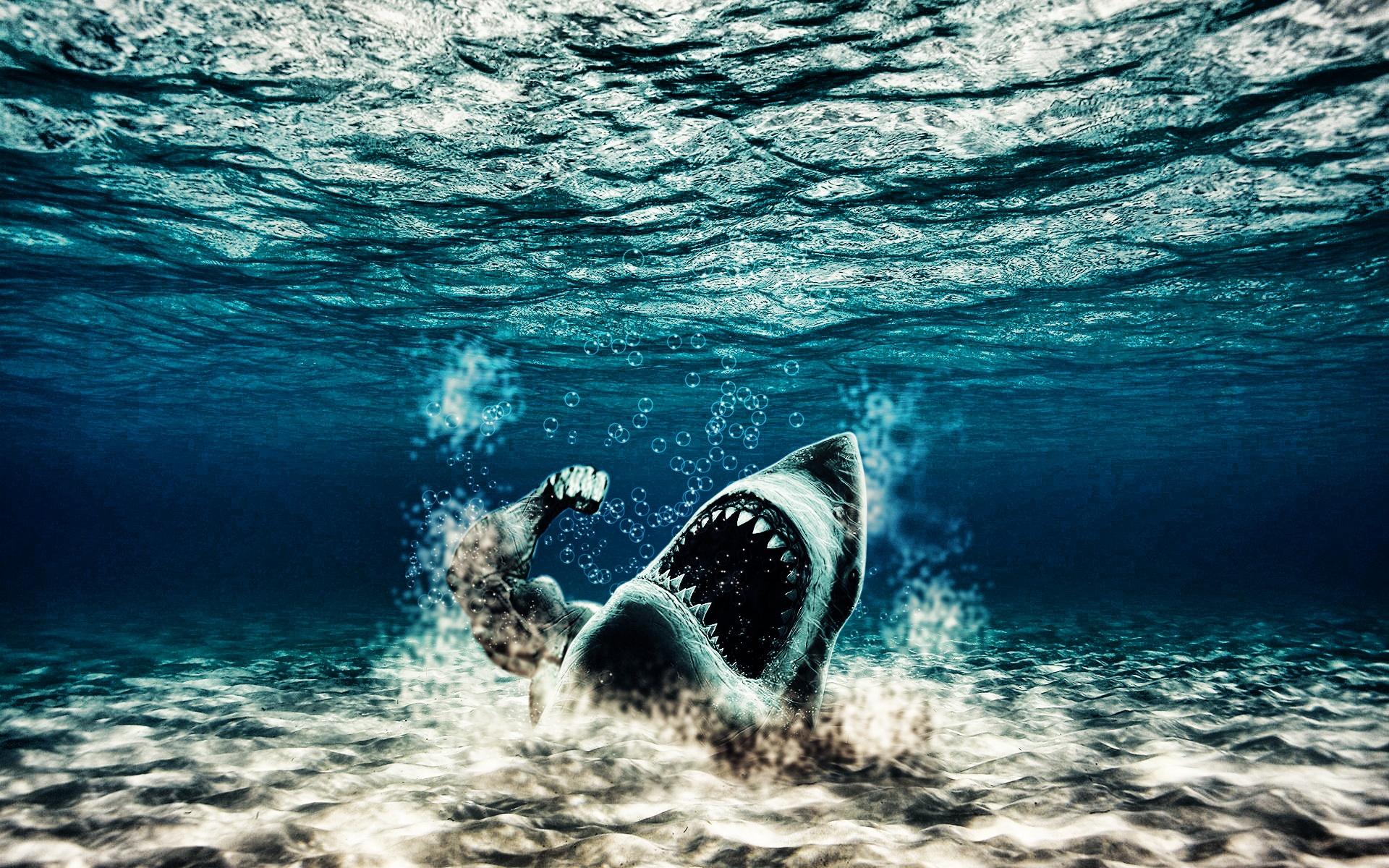 Графика под водой  № 2252542  скачать