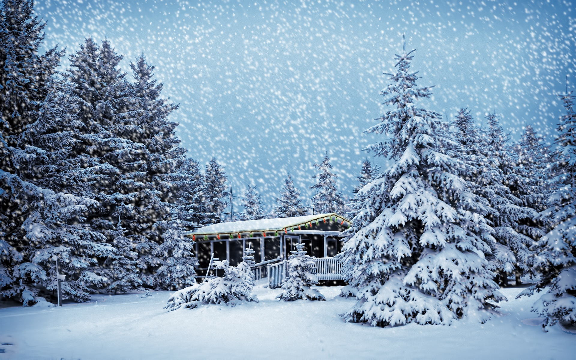 wallpaper house in the winter forest 1920x1200 hd picture image