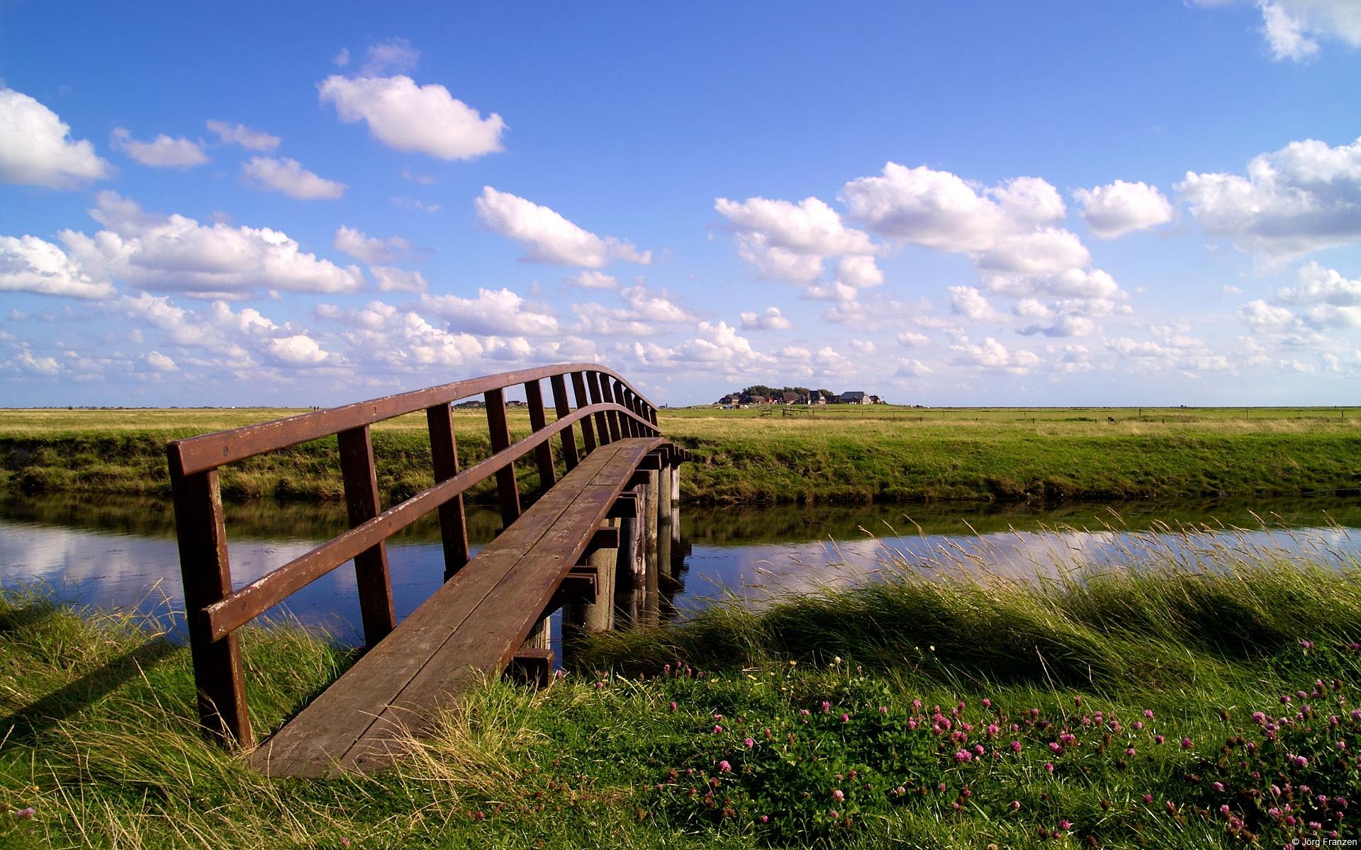 мост цветы речка скачать