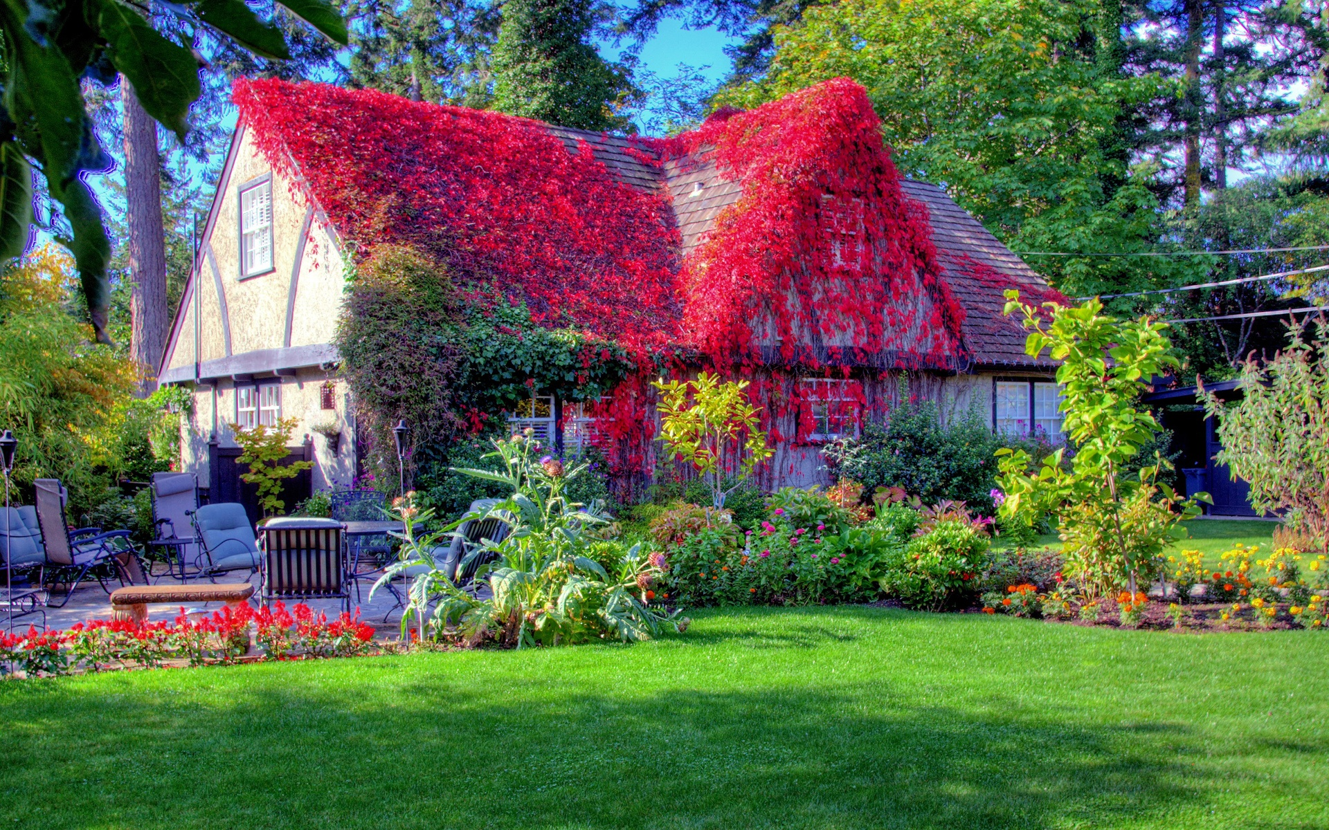 Image Result For Best House In The