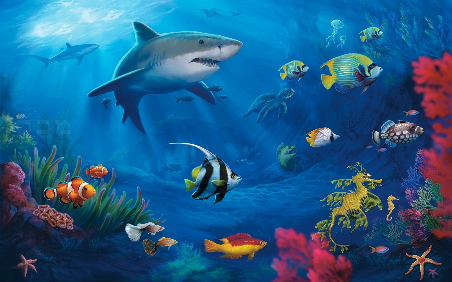 Monde sous-marin, les requins fonds d'écran - 1920x1200