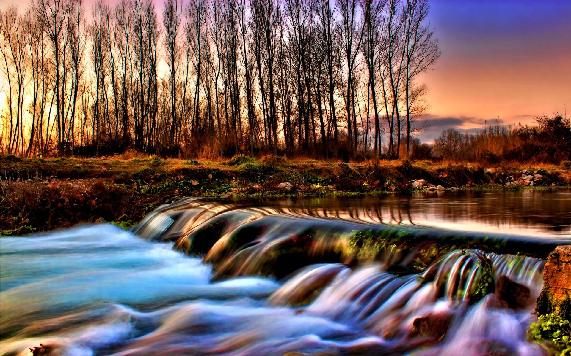 Río y el bosque d...