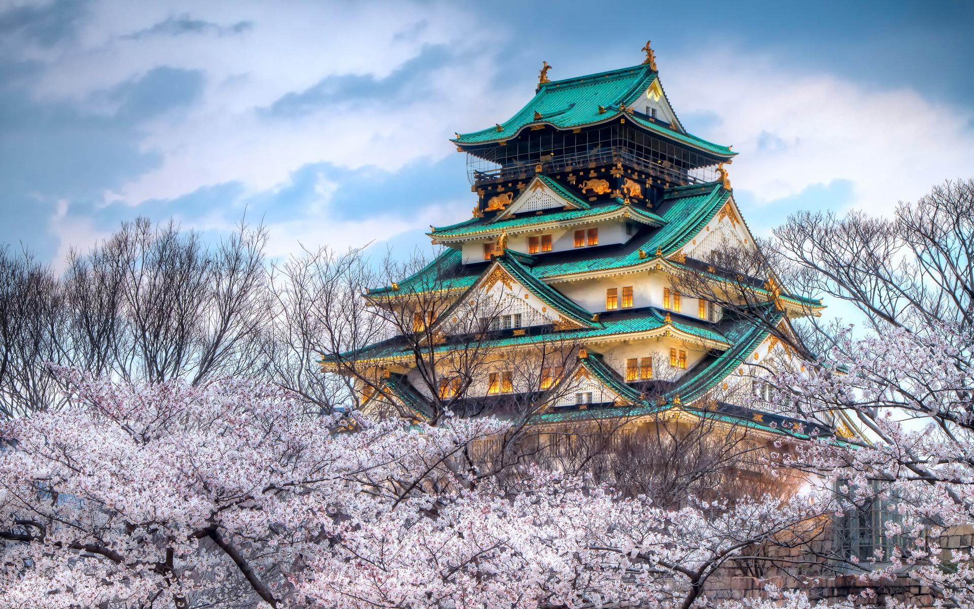 Fonds D Ecran Le Temple De La Saison De Fleurs De Cerisier Au Japon