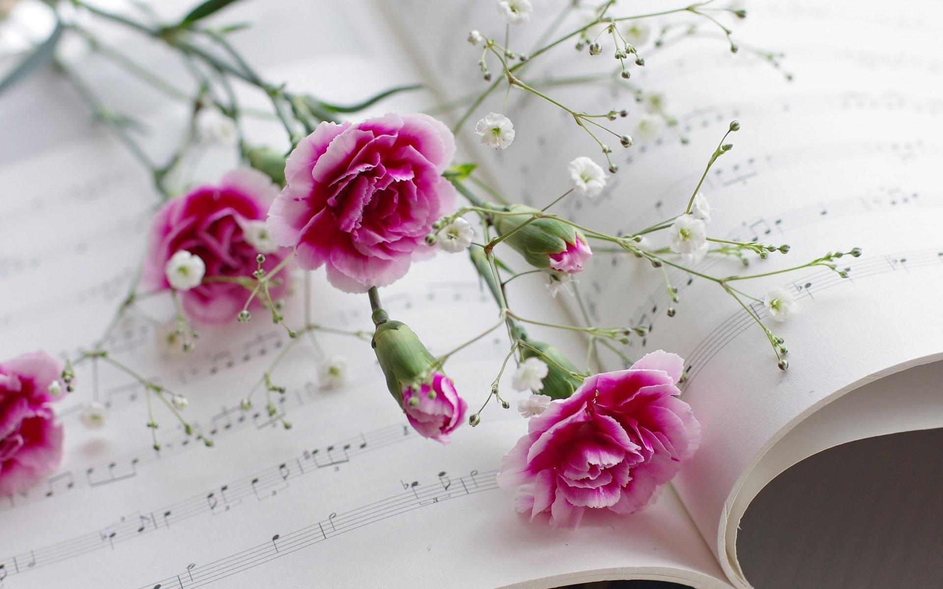 цветы тетрадь листы сердце  № 1351019  скачать