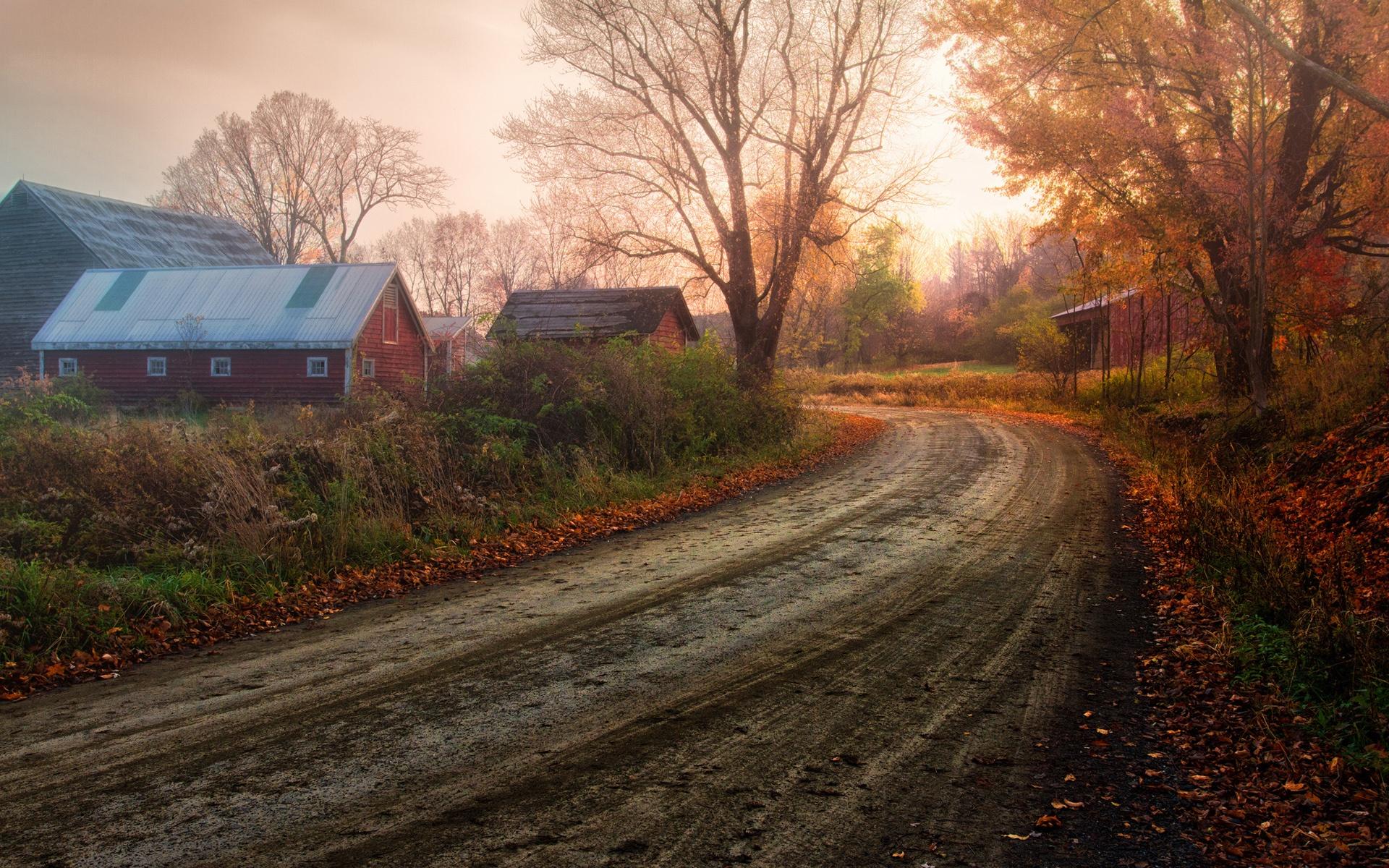 paysage fantastique campagne automne arbres feuilles