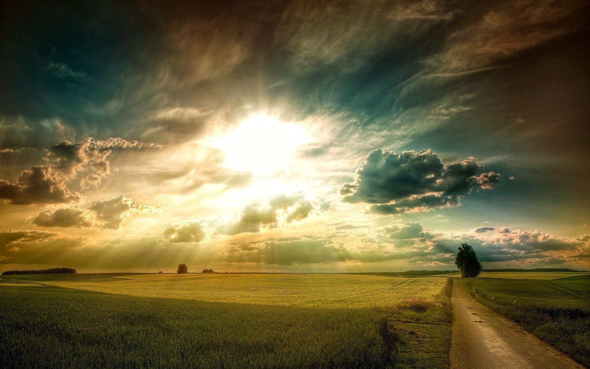 Поле дорога небо закат скачать