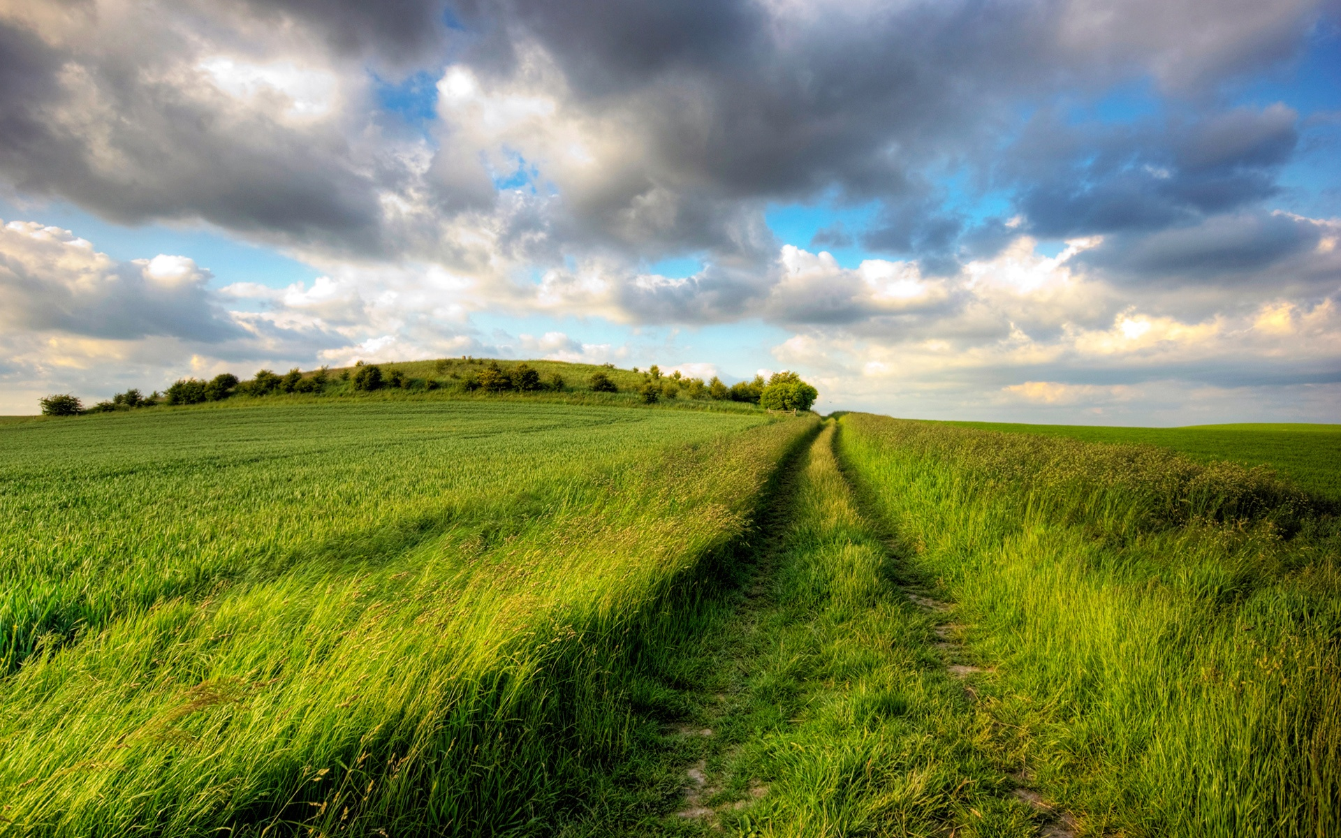 Summer fields, green, road, cloudy sky, endless Wallpapers | HD
