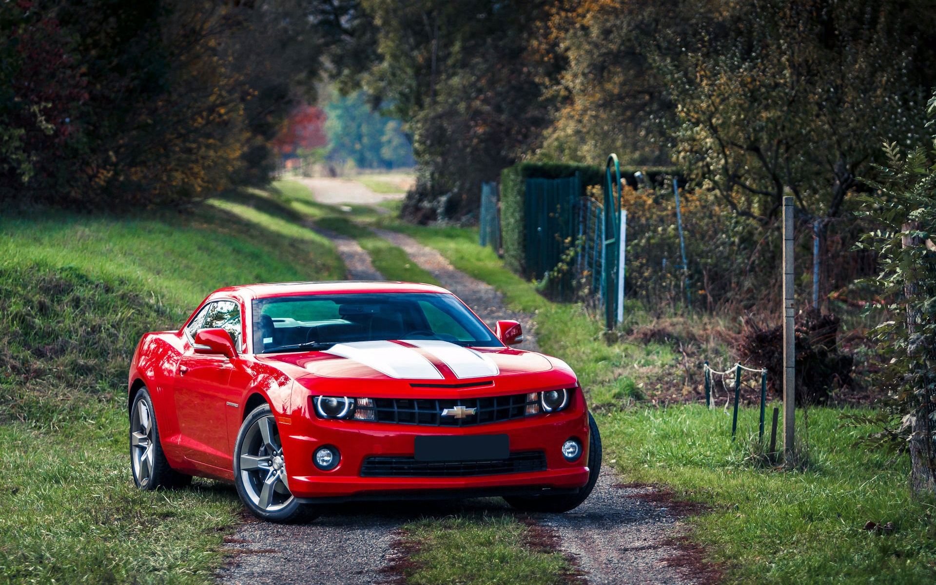 Wallpaper Red Chevrolet Camaro Muscle Car 1920x1200 HD Picture Image