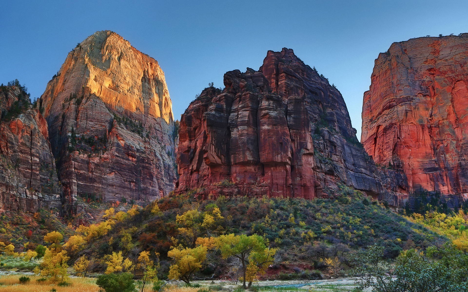 Wallpaper Zion National Park Utah Usa Rock Mountains Trees