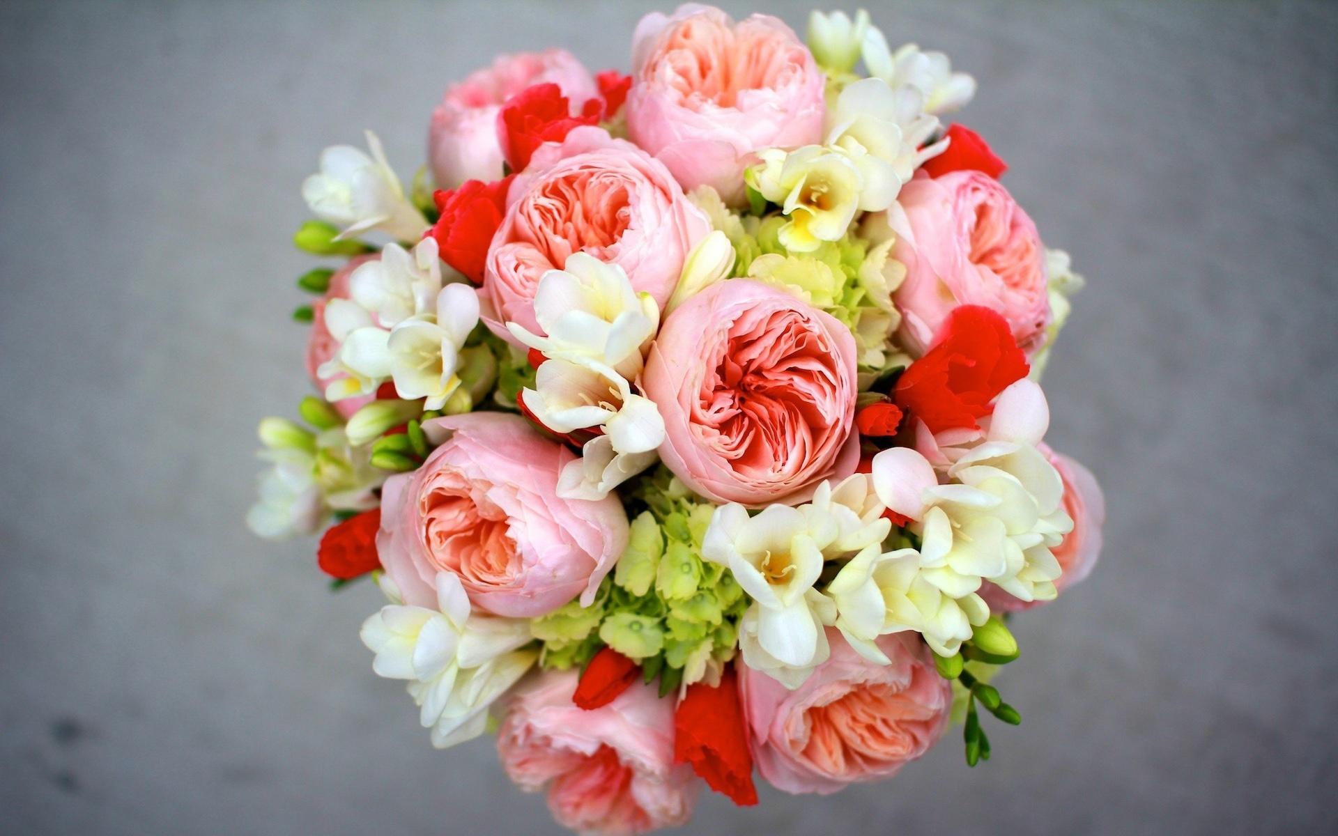 1920x1200 hd for Bouquet de fleurs hd