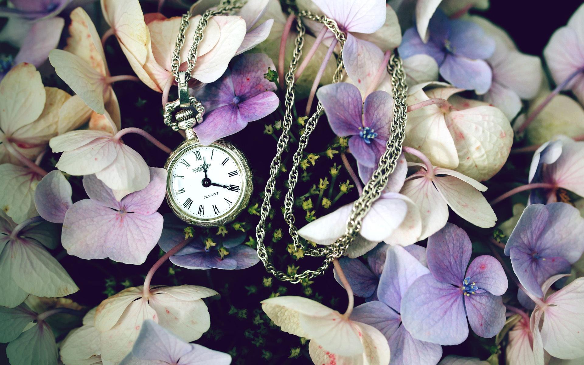 природа цветы часы  № 1520661 загрузить