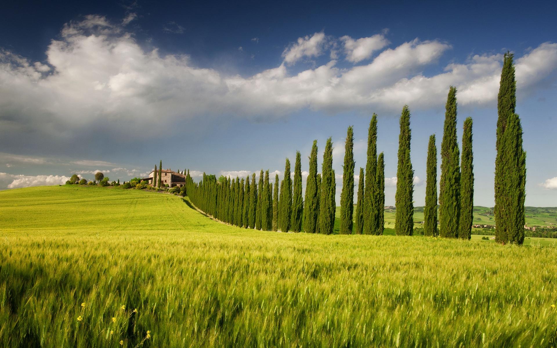 Описание италия кампания весенние