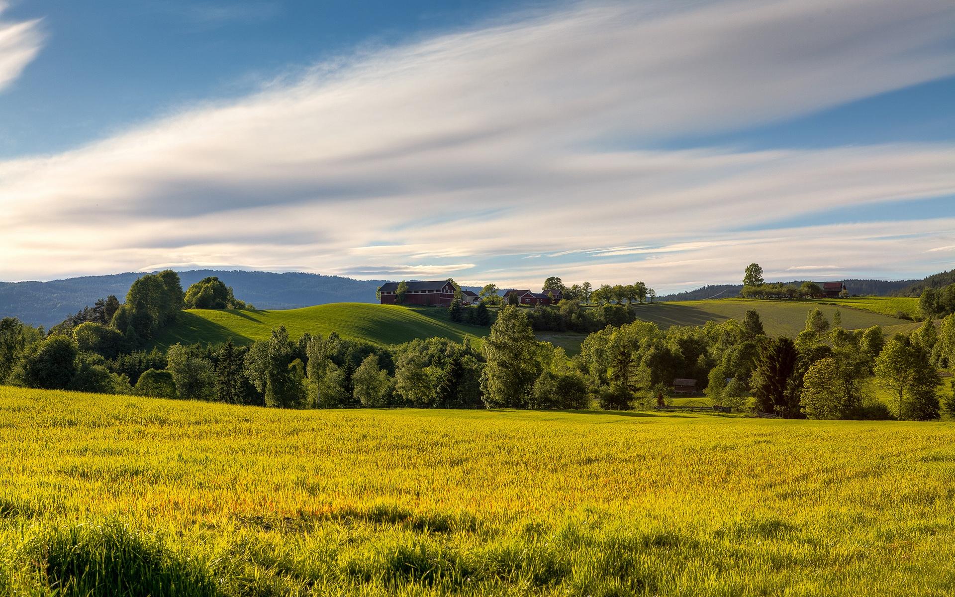 фото красивые пейзажи луга и поля педагогический