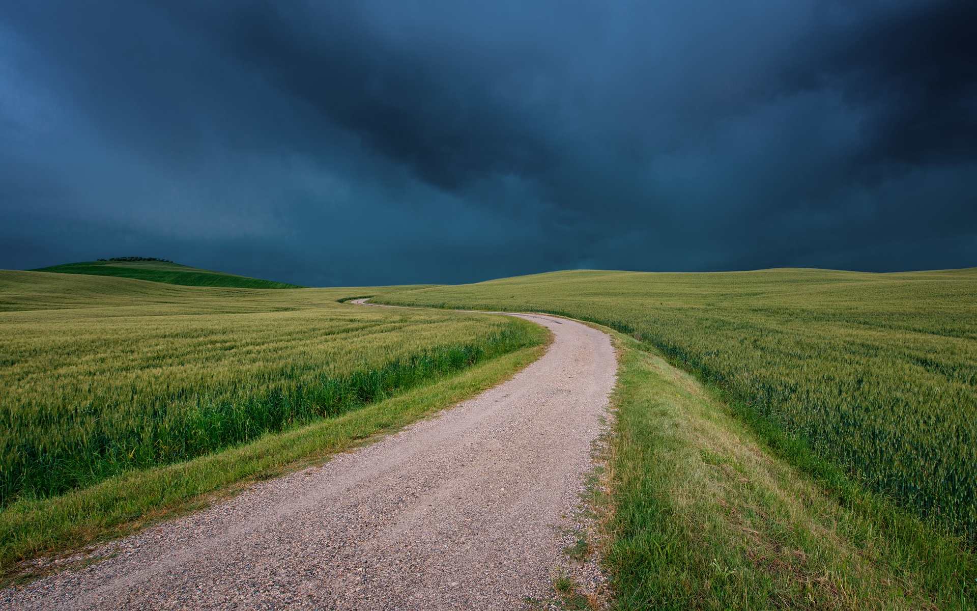 Дорога через зеленое поле  № 2604522 загрузить