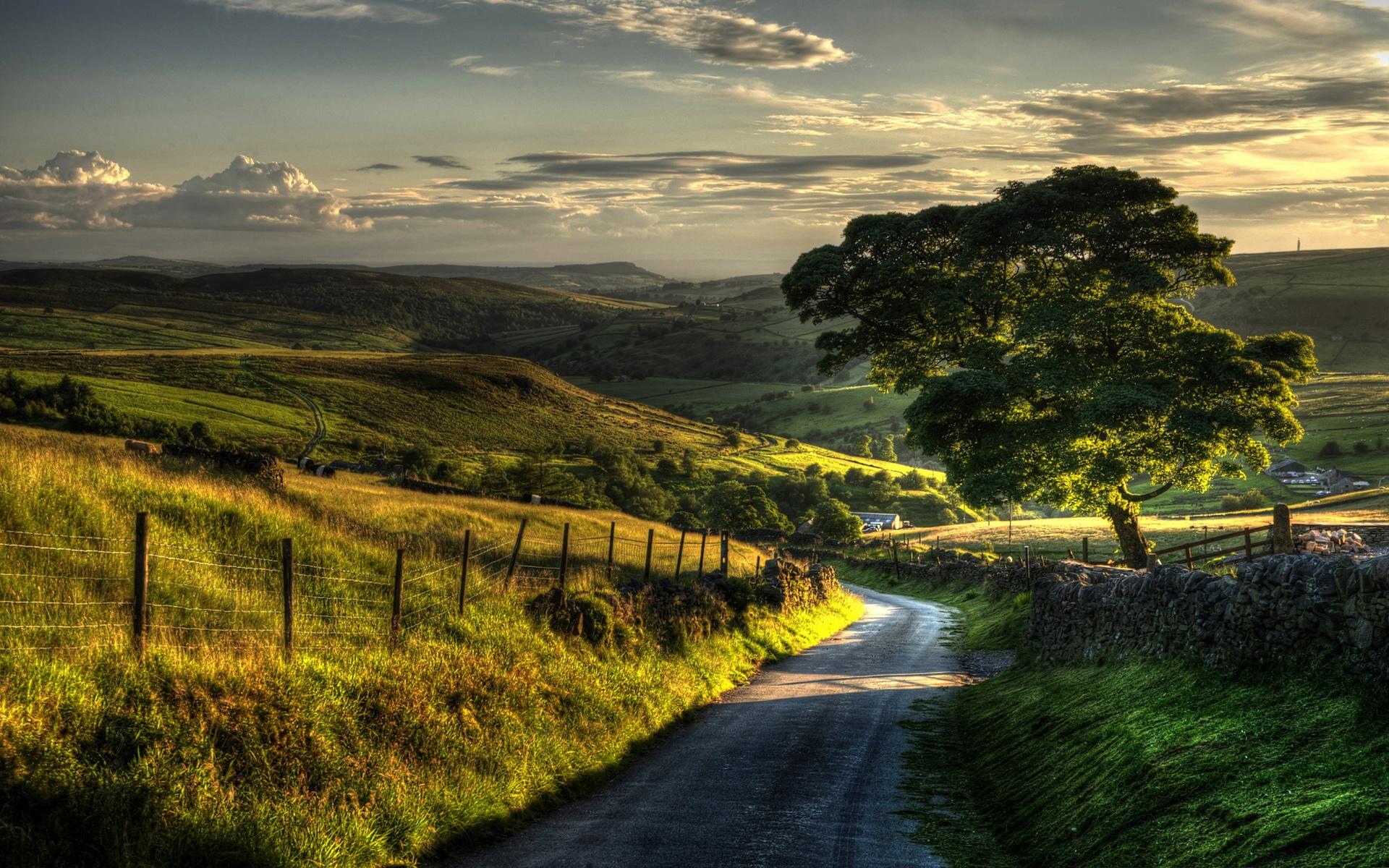 시골 자연 풍경, 울타리, 언덕, 도로, 나무 배경 화면  1920x1200 ...