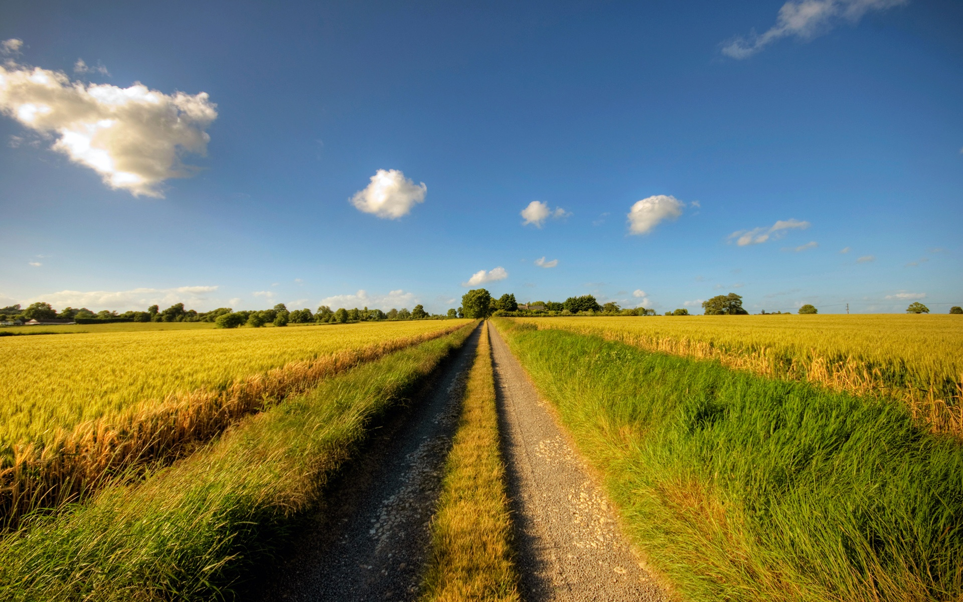 Footpath, road, sunny day, fields, clouds, summer Wallpapers | HD