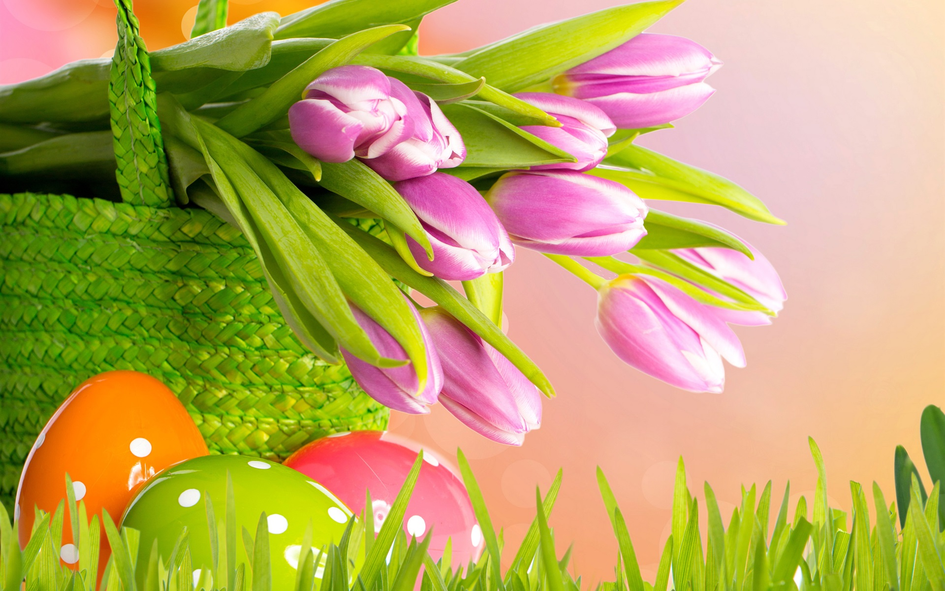 Download hintergrundbilder 1920x1200 lila tulpen ostern for Wallpaper ostern