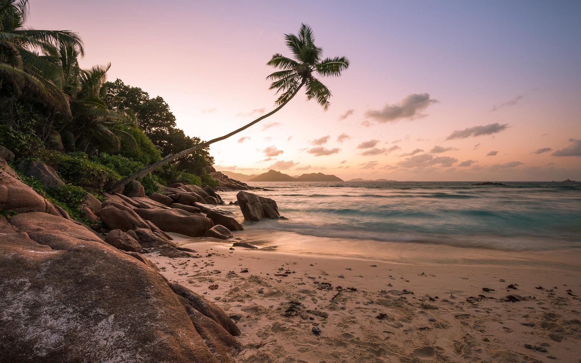 Wallpaper Caribbean Sea Beach Sunset Palm Trees Hd 5k: 壁紙 ビーチ、海岸、ヤシの木、海、夕日 1920x1200 HD 無料のデスクトップの背景, 画像