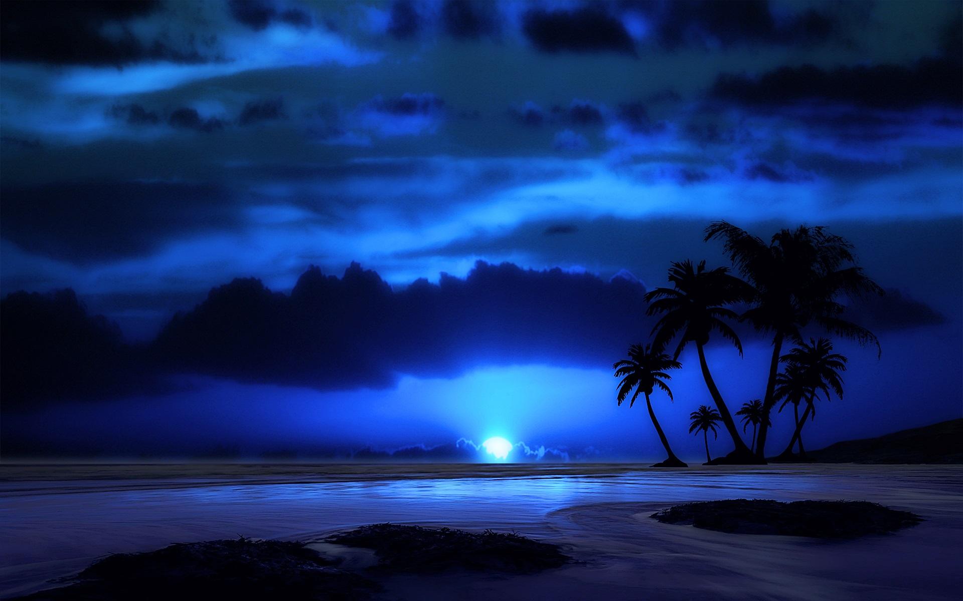 壁紙 夕方 夜 空 雲 海 熱帯 椰子の木 月 1920x1200 Hd 無料の