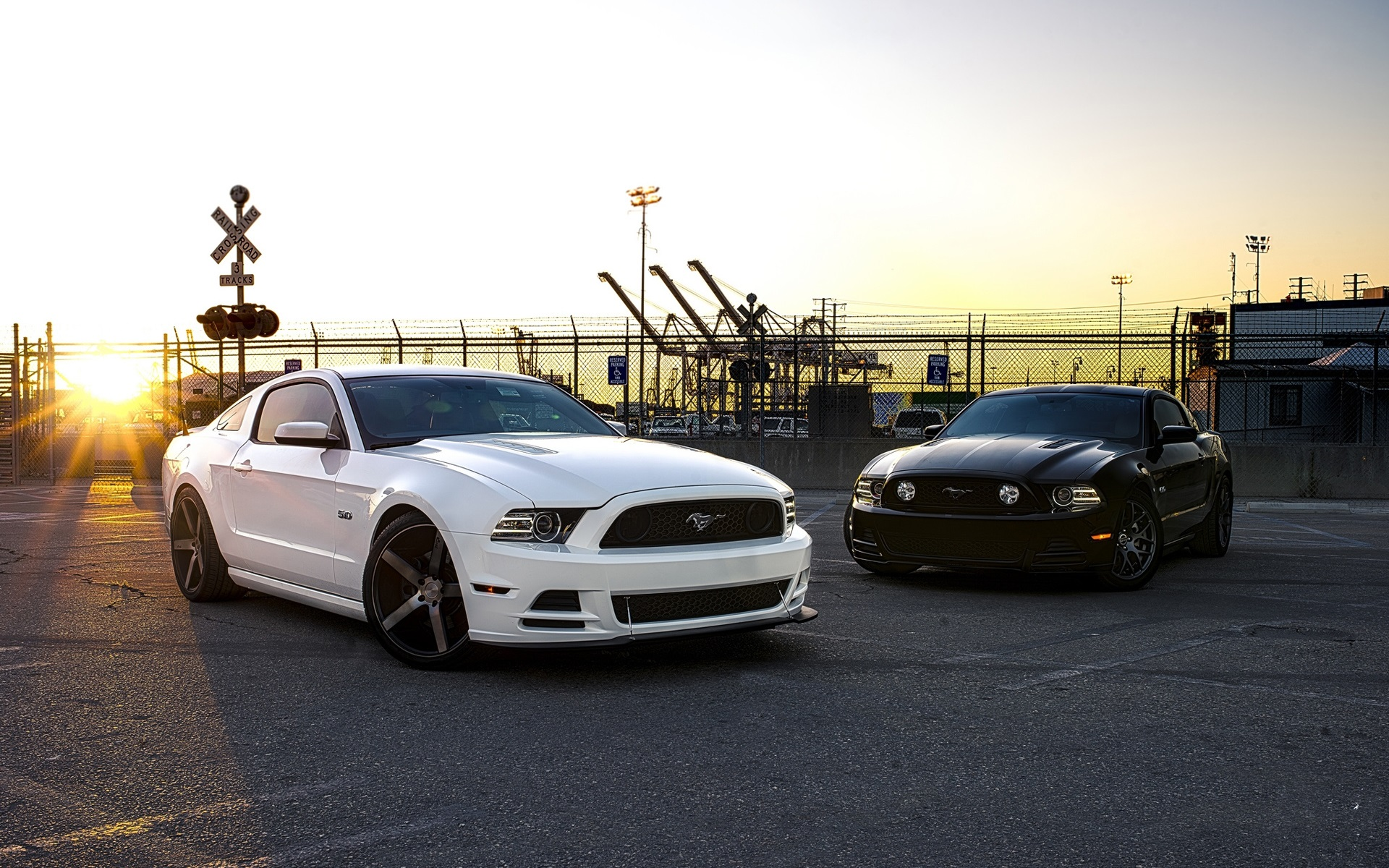 Wallpaper Ford Mustang Black And White Cars 1920x1200 Hd Picture Image