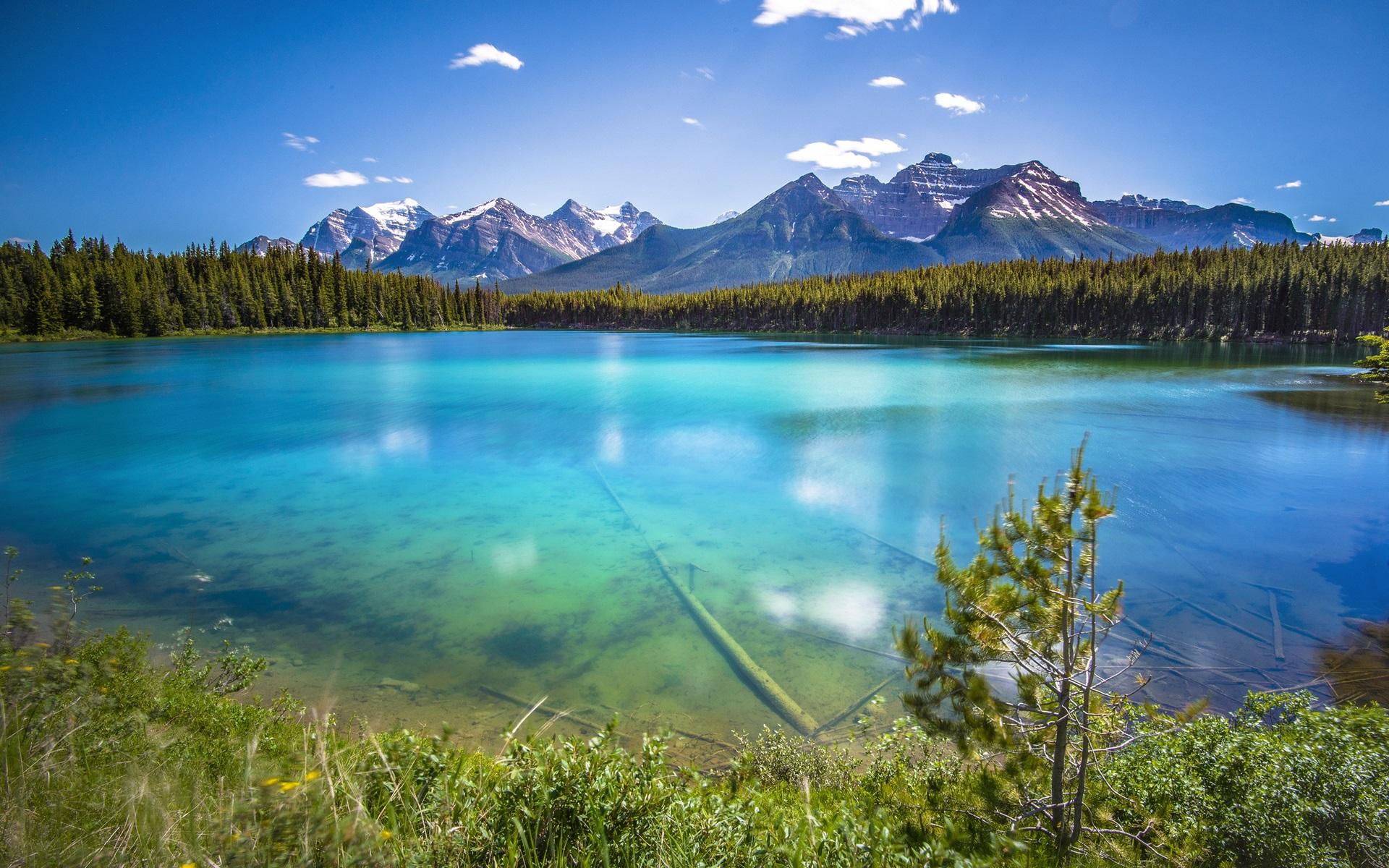 Вода озеро картинки