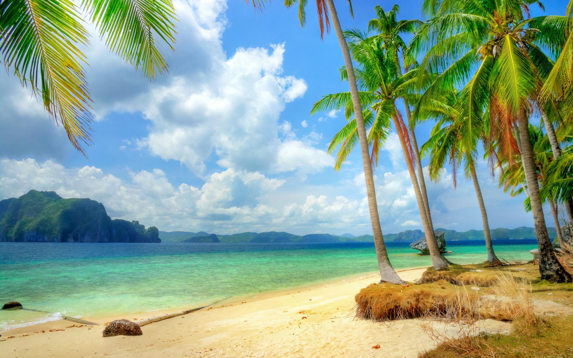 Fonds d'écran Côte tropicale, plage, côte, mer, bleu, des palmiers, des nuages 1920x1200 HD image