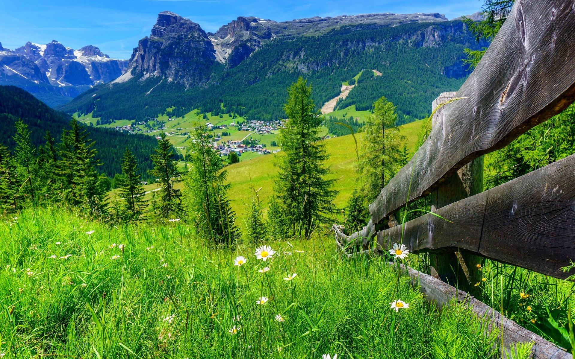 dorf haus gras blumen zaun b ume berge sommer