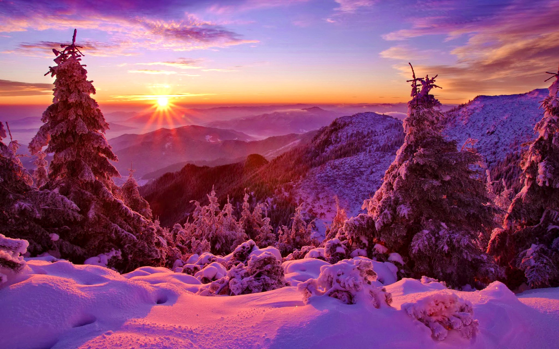 Wallpaper Winter Sky Sunset Mountains Forest Trees