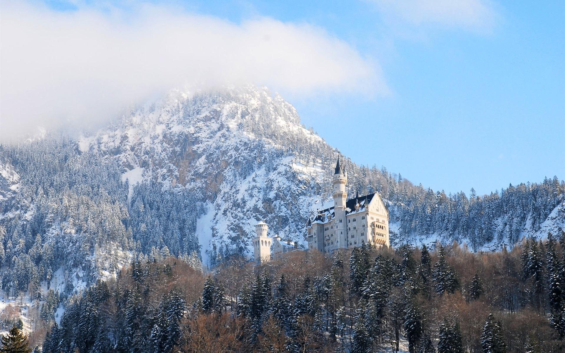 neuschwanstein deutschland bayern schloss winter b ume 1920x1200 hd hintergrundbilder hd bild. Black Bedroom Furniture Sets. Home Design Ideas